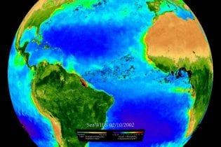 SOS Dataset: Biosphere