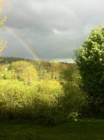 Echols-rainbow-over-back-of-yard-scaled