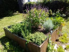 herb-garden-low-res