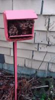 pollinator-box-low-res